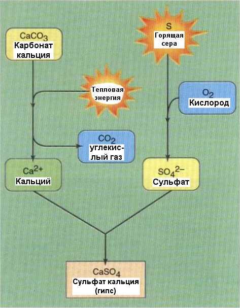 Предполагаемая схема химических реакций, вызванных катастрофой, имевшей место на исследуемом участке.